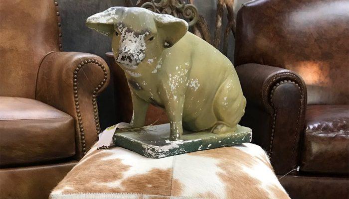 decorative-pig